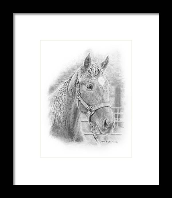 Horse Realistic Drawing Rendering Graphite Pencil Animal Western Framed Print featuring the drawing Whistler by Douglas Kochanski