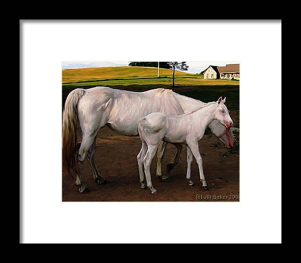 White Horses Framed Print featuring the painting White Baby Horse by Jill Baker