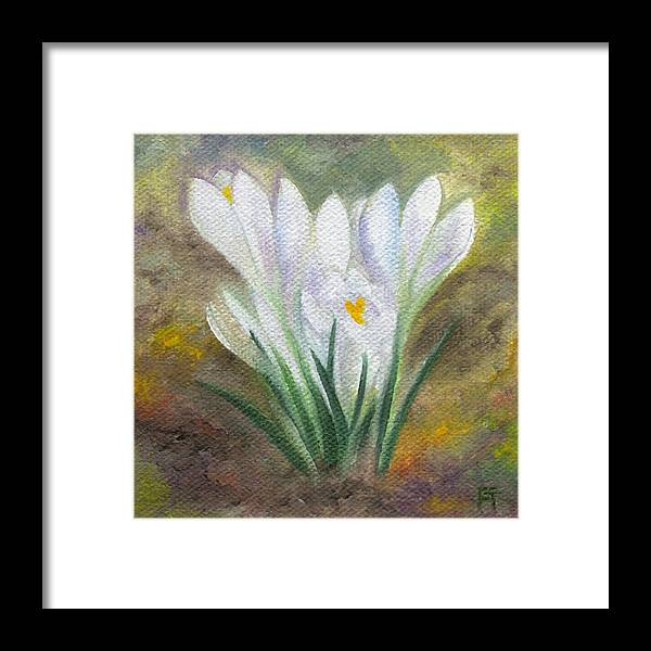 Bulbs Framed Print featuring the painting White Crocus by FT McKinstry