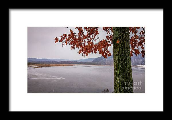 White Framed Print featuring the photograph White Lake by Lyudmila Prokopenko