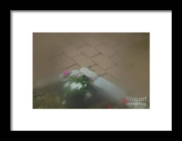 Abstract Framed Print featuring the photograph White Pink And Gray by Alwyn Glasgow