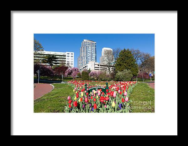 Clarence Holmes Framed Print featuring the photograph White Plains Beautification Foundation Garden by Clarence Holmes