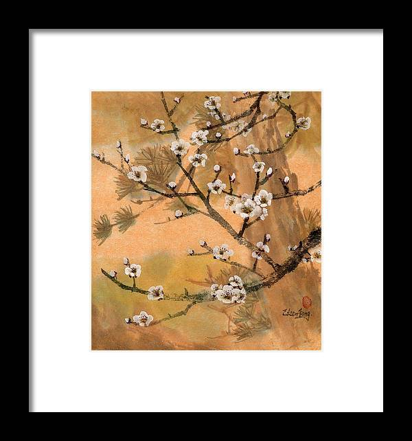 White Plum Blossoms Framed Print featuring the painting White Plum Blossoms With Pine Tree by Eileen Fong