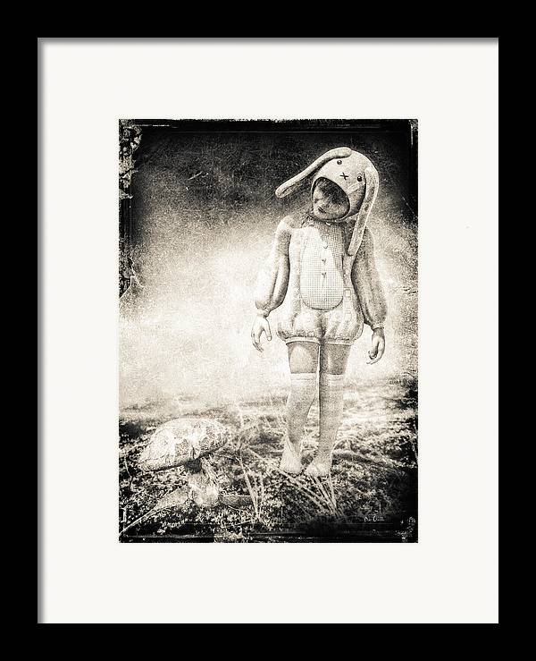 Landscape Framed Print featuring the photograph White Rabbit by Bob Orsillo