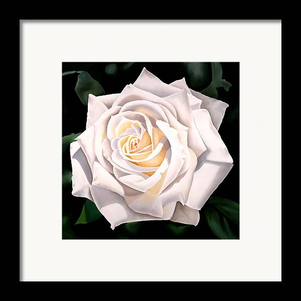 Flower Framed Print featuring the painting White Rose by Ora Sorensen