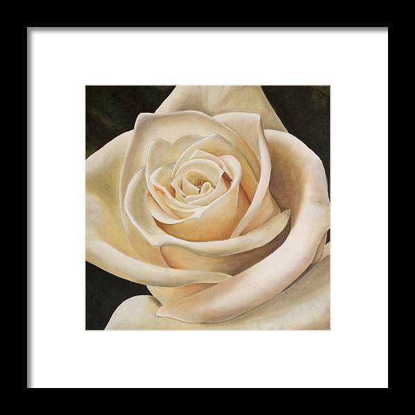 Flower Framed Print featuring the painting White Rose by Rob De Vries