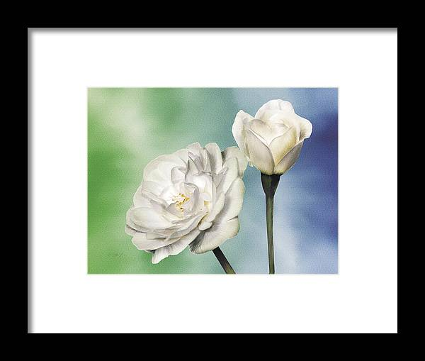 Rose Framed Print featuring the painting White Roses by Jan Baughman