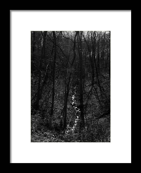 Ansel Adams Framed Print featuring the photograph White Rriver Headwater by Curtis J Neeley Jr