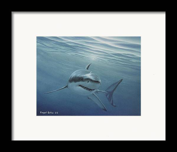 Shark Framed Print featuring the painting White Shark by Angel Ortiz