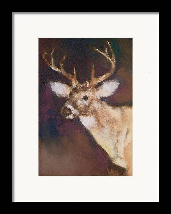 White Tail Deer Framed Print featuring the painting White Tail Buck by Debbie Anderson