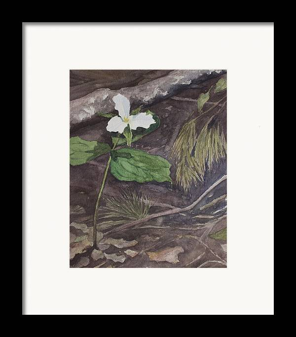 White Trillium Framed Print featuring the painting White Trillium by Debbie Homewood