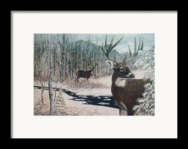 Deer; Snow; Creek Framed Print featuring the painting Whitetail Deer by Ben Kiger
