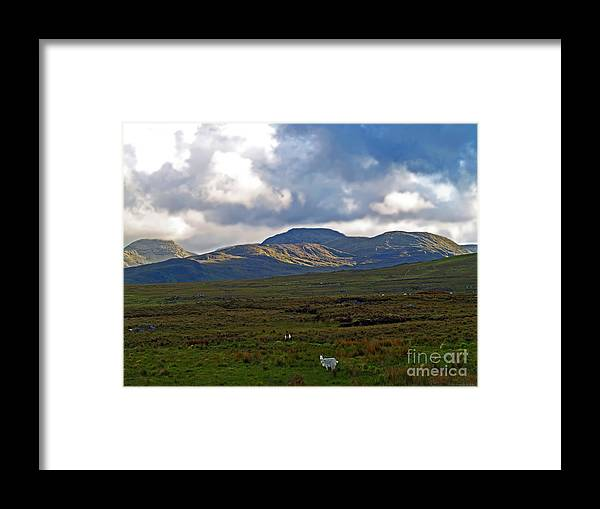 Fine Art Photography Framed Print featuring the photograph Who You Lookin' At by Patricia Griffin Brett