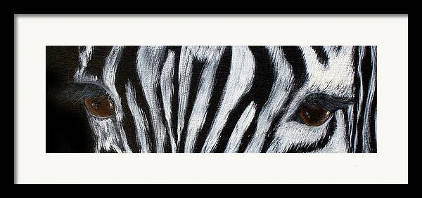Zebra Eyes Framed Print featuring the painting Whos Watching Who  Zebra by Darlene Green