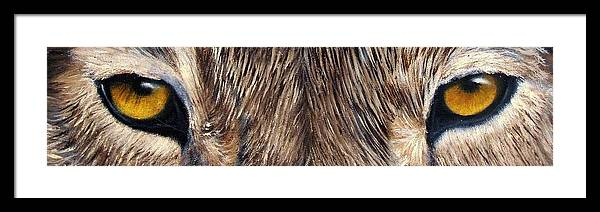 Wolf Eyes Framed Print featuring the painting Whos Watching Who Timber Wolf by Darlene Green