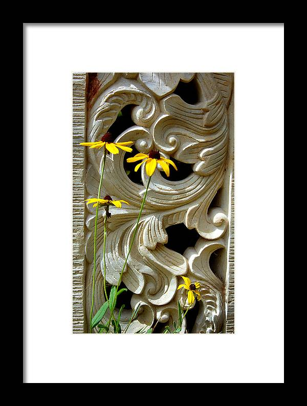 Black Eyed Susans Framed Print featuring the photograph Wild Beauty by Heather S Huston