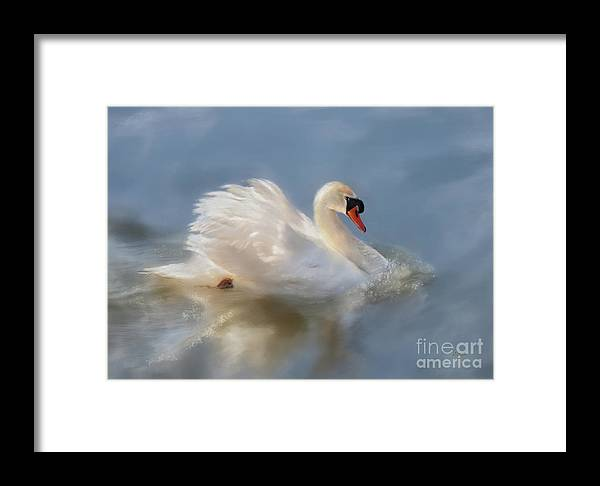 Swan Framed Print featuring the digital art Wild Beauty Painted by Lois Bryan