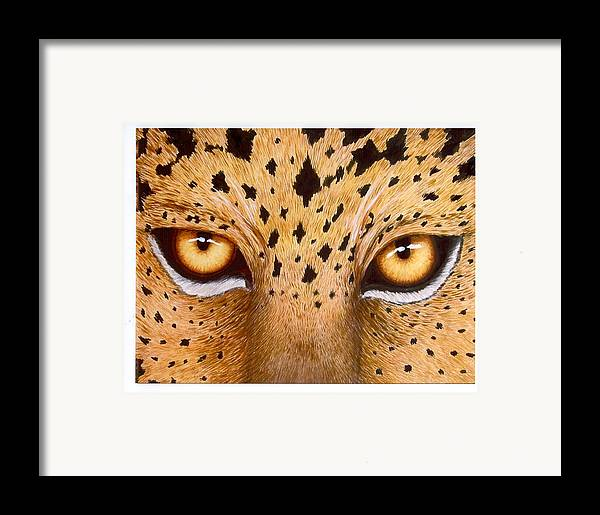 Animal Framed Print featuring the painting Wild Eyes by Lorraine Foster