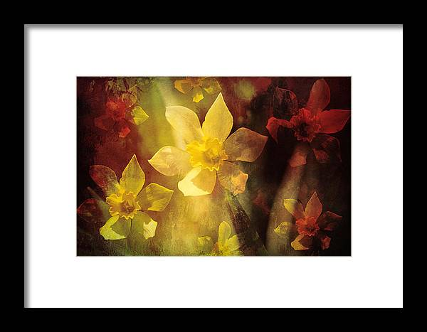 Framed Print featuring the photograph Wild Fire by Theresa Campbell