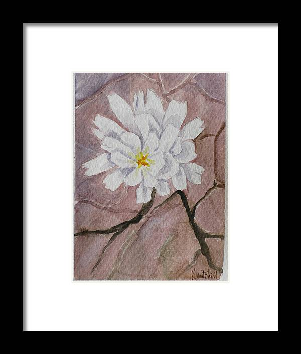 Floral Framed Print featuring the painting Wild Flower On The Rocks by Kathy Mitchell