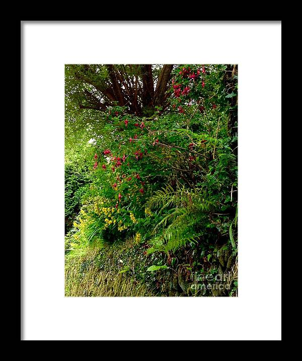 Wild Flowers Framed Print featuring the photograph Wild Flowers On The Cliff Path by Joan-Violet Stretch