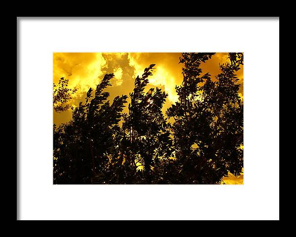 Nature Framed Print featuring the photograph Wild Moves by Florene Welebny