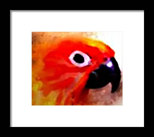 Parrot Framed Print featuring the digital art Wild Parrot by Crystal Webb