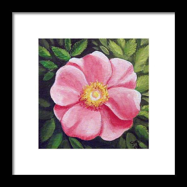 Rose Framed Print featuring the painting Wild Rose by Sharon Marcella Marston