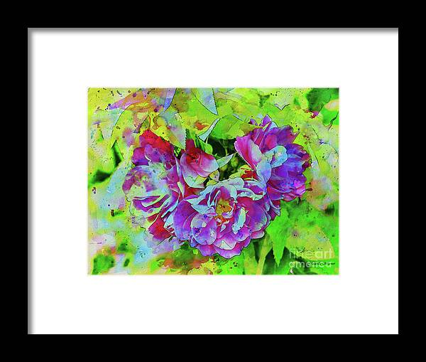 Roses Framed Print featuring the photograph Wild Roses 3 by Malanda Warner