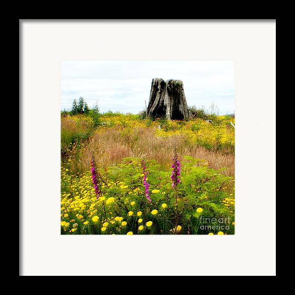 Stump Framed Print featuring the photograph Wildflowers by Idaho Scenic Images Linda Lantzy
