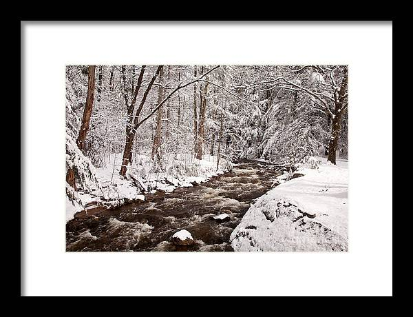 Boston Area Framed Print featuring the photograph Willard Brook 2 by Susan Cole Kelly