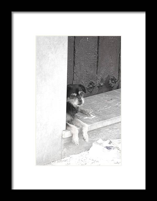 Photographer Framed Print featuring the photograph Willl She Come Back by Jez C Self