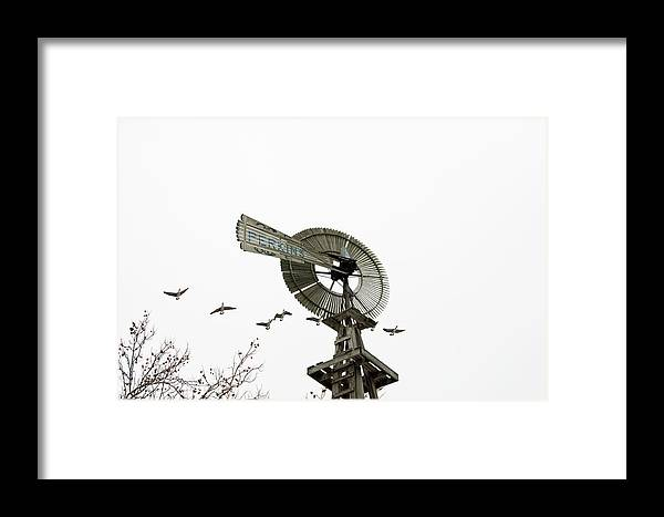 Geese Framed Print featuring the photograph Windmill And Geese by David Arment
