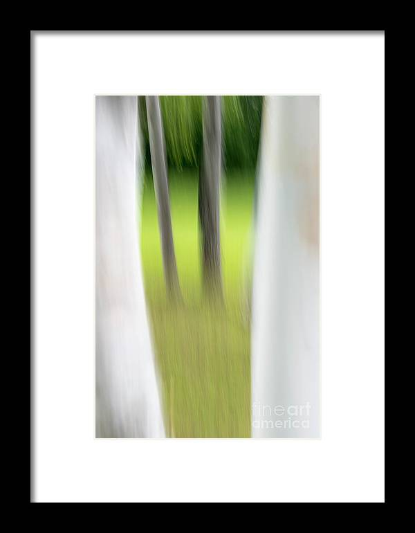 Abstract Framed Print featuring the photograph Window To A Dream by Darla Bruno