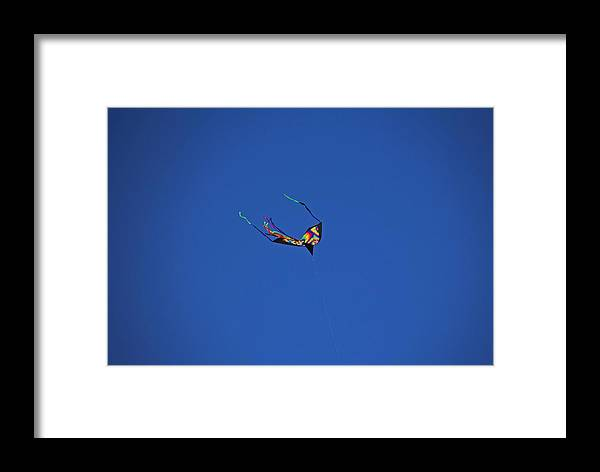 Kite Framed Print featuring the photograph Windsong by Michiale Schneider