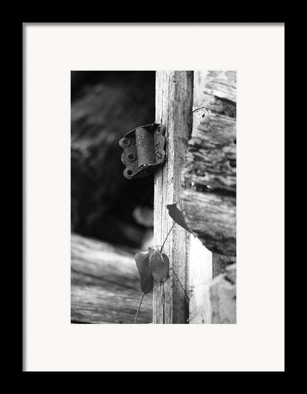 Ansel Adams Framed Print featuring the photograph Winslow Cabin Door Detail by Curtis J Neeley Jr