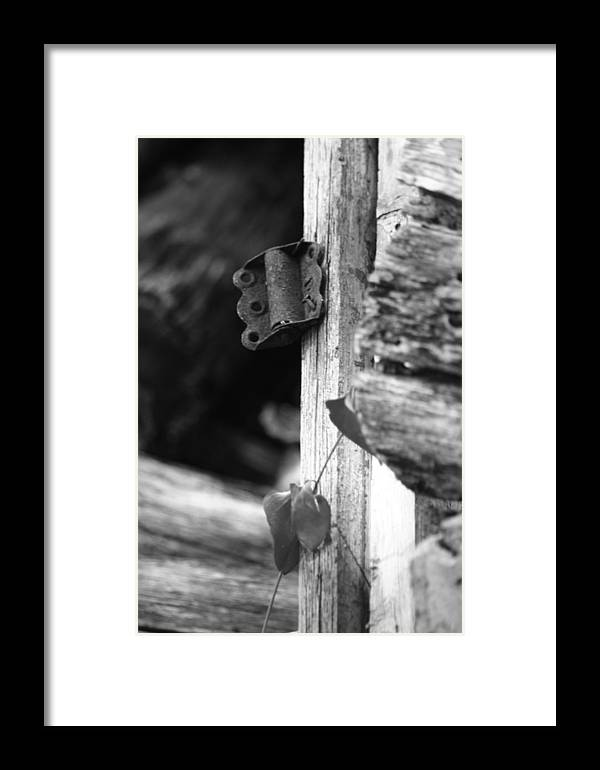 Ansel Adams Framed Print featuring the photograph Winslow Cabin Door Detail by Curtis J Neeley Jr