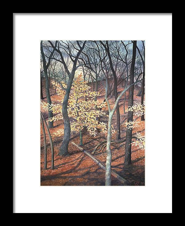 Trees Framed Print featuring the painting Winter Beech by Craig Gallaway