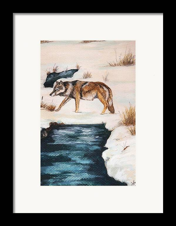 Coyote Framed Print featuring the painting Winter Coyote by Debra Sandstrom