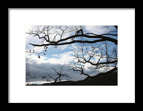 Cheyanna Muhlert Framed Print featuring the painting Winter by Cheyanna Muhlert