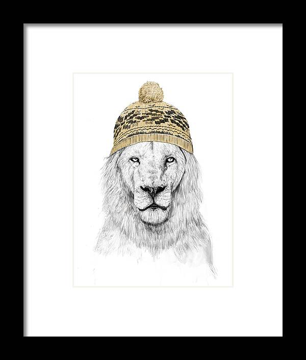Lion Framed Print featuring the drawing Winter lion by Balazs Solti