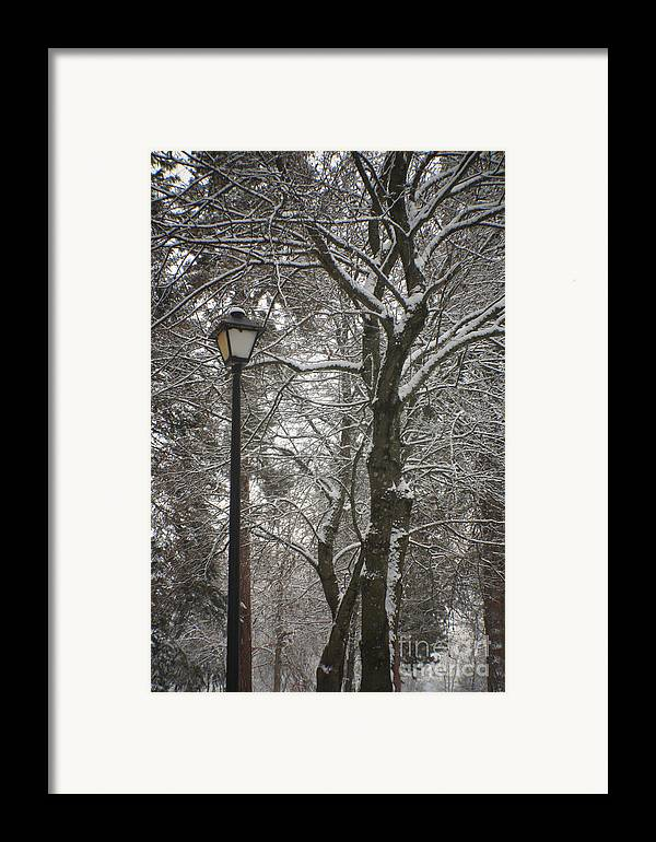 Lamp Framed Print featuring the photograph Winter Lamp Post by Idaho Scenic Images Linda Lantzy