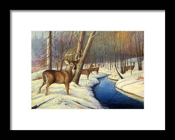 Wildlife Painting - Whitetail Deer Framed Print featuring the painting Winter Monarch by Michael Scherer