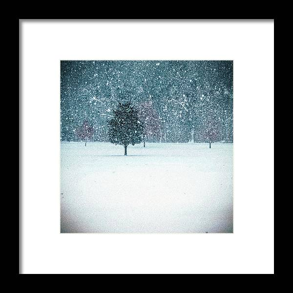 Winter Framed Print featuring the photograph Winter Scene by Keith Kadwell