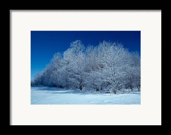 Winter Framed Print featuring the photograph Winter Scene by Raju Alagawadi