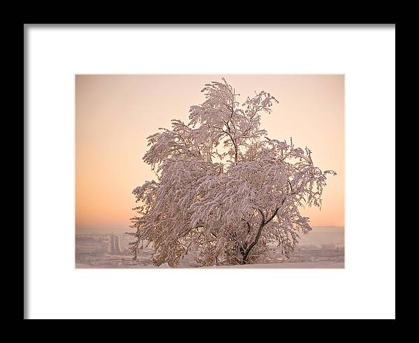 Winter Framed Print featuring the photograph Winter Sunset by Marilyn Hunt
