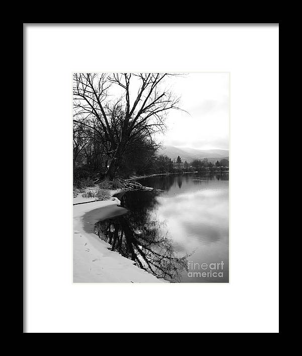 Black And White Framed Print featuring the photograph Winter Tree Reflection - Black and White by Carol Groenen