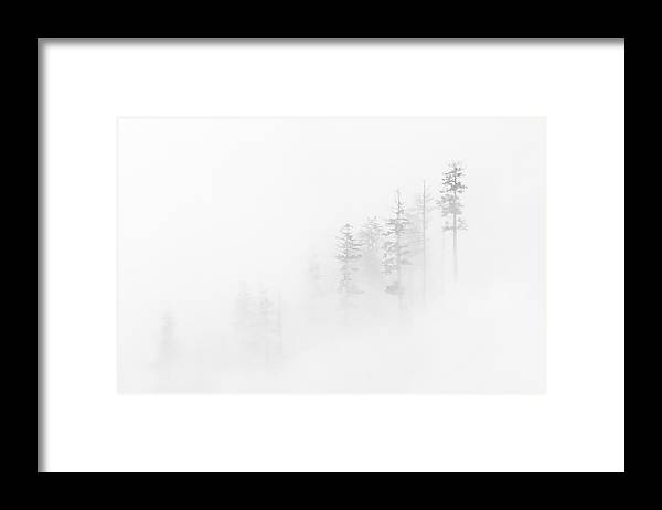 Winter Framed Print featuring the photograph Winter Veil by Mike Dawson