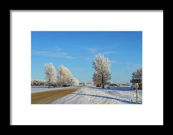 Winter Framed Print featuring the photograph Winter In Saskatchewan by Viktor Birkus