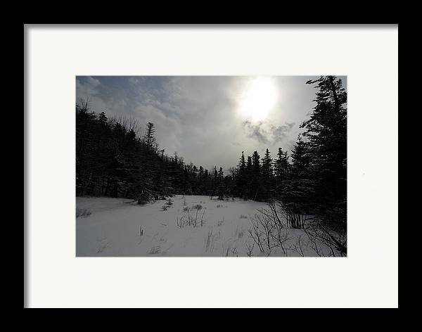 Nature Framed Print featuring the photograph Winter Woods by Eric Workman